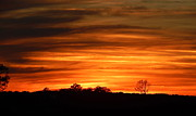 Terry Cobb - A Blazing Sunset Over...