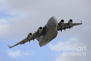Featured Metal Prints - A Boeing C-17 Globemaster Iii Taking Metal Print by Remo Guidi