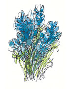 Wild-flower Posters - A Bouquet of Texas Bluebonnets Poster by Kathleen McElwaine
