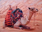 Ahmed Bayomi - A Break in Sinai Desert