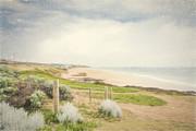 Elaine Teague - A Bunbury Beach in...