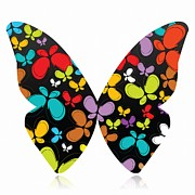 Anne Marie Baugh - A Butterfly Of...