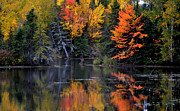 Andrew Lorimer Prints - A Canadian Fall Print by Andrew Lorimer
