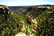 Canyons Prints - A Canyon At Mesa Verde Print by Jeff  Swan