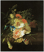 Carnation Painting Prints - A Carnation Morning Glory with Other Flowers Print by Rachel Ruysch