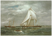 Yacht Paintings - A Centerboard Schooner of the New York Yacht Club by James Gale Tyler