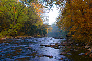 Colors Of Autumn Posters - A Change of Season along the Wissahickon Creek Poster by Bill Cannon