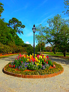 Joetta Beauford - A Clear Colorful Park