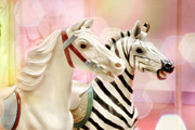 Zebra Framed Prints - A Close Race Framed Print by Amy Tyler
