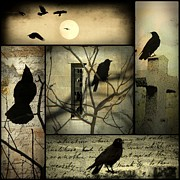 Gothic Crows Framed Prints - A Collage Of Crows Framed Print by Gothicolors And Crows