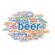 Word Cloud Prints - A Concept Cloud for Beer Print by Philip Ralley