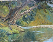 Terry Perham Prints - A Coramandel Stream Print by Terry Perham