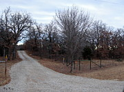 Country Driveway Photo Posters - A country driveway near the Brazos River Poster by Amy Hosp