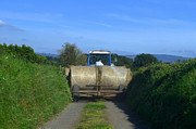 Joe Cashin - A country road