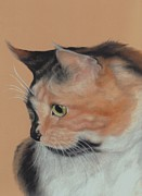 Cat Portraits Pastels Prints - A Curious Cat Print by Pamela Humbargar