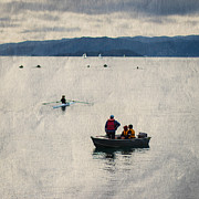 Rowboat Photos - A day out rowing in Wellington by Constance Fein Harding