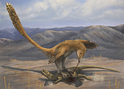 Dromaeosaurid Prints - A Deinonychus Feeds On The Carcass Print by Emily Willoughby