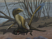 Extinct Bird Framed Prints - A Deinonychus Protects Its Kill Framed Print by Emily Willoughby