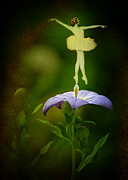 Balloon Flower Photo Metal Prints - A Fairy in the Garden Metal Print by Rebecca Sherman
