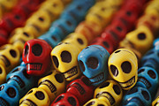 Skulls Photos - A Family Divided by Mike Herdering