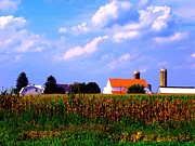 Amish Farms Posters - A Farm Landscape Poster by Annie Zeno