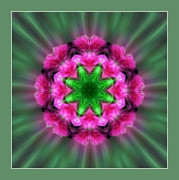 Centered Digital Art - A Featrhered Star by Linda Phelps