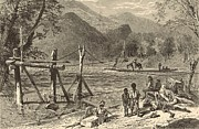 19th Century America Drawings Posters - A Ferry on the French Broad 1872 Engraving Poster by Antique Engravings