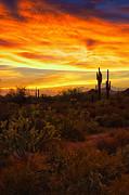 Saija  Lehtonen - A Fiery Desert Sunset