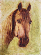 Thoroughbred Race Paintings - A Fine Horse by Xueling Zou