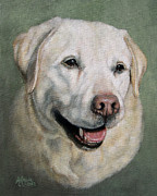 Old Labradors Prints - A Fine Old Lady Yellow Labrador Portrait Print by Amy Reges