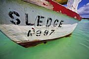 David Letts Framed Prints - A Fishing Boat Named Sledge Framed Print by David Letts