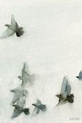 Black Bird.flying Art Paintings - A Flock of Pigeons 1 Watercolor Painting of Birds by Beverly Brown Prints