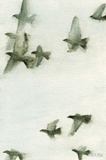 Black Bird.flying Art Paintings - A Flock of Pigeons 2 Watercolor Painting of Birds by Beverly Brown Prints