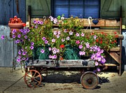 Metamora Metal Prints - A Flower Wagon Metal Print by Mel Steinhauer