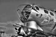 Nose Art Posters - A Flying Fortress bw Poster by Mel Steinhauer