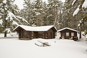 Log Cabin Photos - A Forest Cabin by Tim Grams