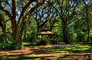 Mel Steinhauer Acrylic Prints - A Gazebo In The Woods Acrylic Print by Mel Steinhauer