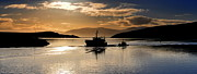 Florian Walsh Metal Prints - A gentle day at Dingle harbour Metal Print by Florian Walsh