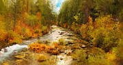 Flyfishing Digital Art Prints - A Good Day in the Fall Print by Diana Ralph