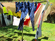 Fiona Allan - A Good Drying Day