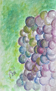 Purple Grapes Framed Prints - A Grape Day Framed Print by Cori Solomon
