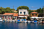 Meirion Matthias - A Greek Island Harbor