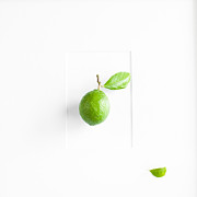 Lemon Art Photo Posters - A Green Lemon Framed Poster by Constance Fein Harding