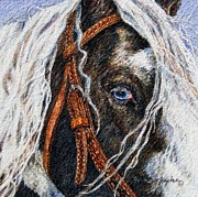 Watercolor. Equine. Bridle Framed Prints - A Gypsys Blue Eye Framed Print by Denise Horne-Kaplan