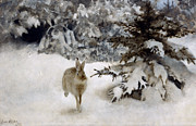 Wildlife Cards Prints - A Hare in the Snow Print by Bruno Andreas Liljefors
