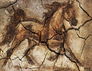 Horse Drawing Mixed Media Prints - A Horse - Cave Art Print by Dragica  Micki Fortuna