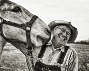 Mule Photos - A joke between friends by Ron  McGinnis