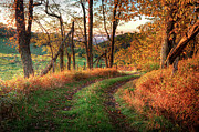Giclee Photography Prints - A Kiss of Fall Colors I - Blue Ridge Parkway Print by Dan Carmichael