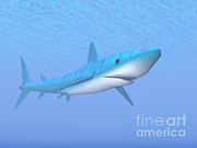 Aggressive Digital Art - A Large Blue Shark Swimming Quietly by Elena Duvernay