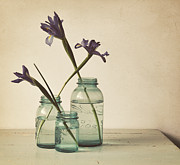 Blue Jar Framed Prints - A Little Bit Country Framed Print by Amy Weiss